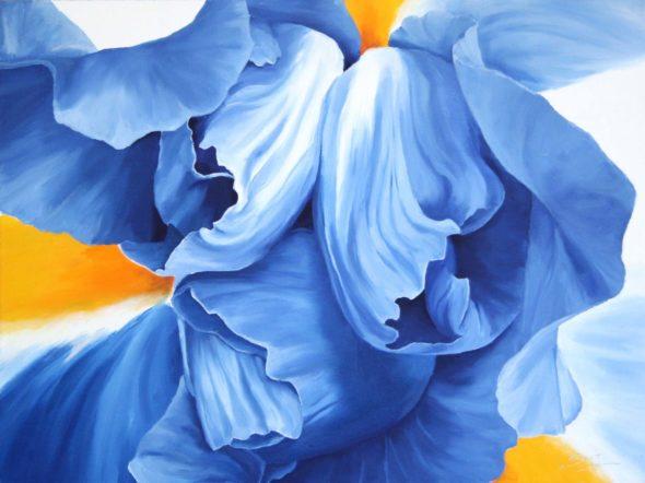 Blue Iris_1small