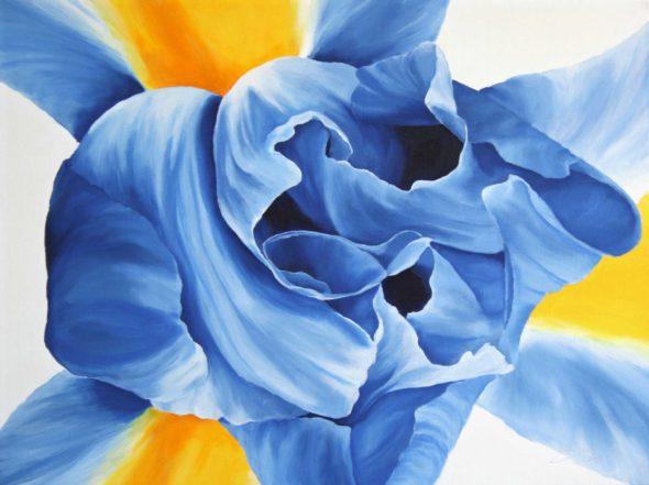 Blue Iris_2Small