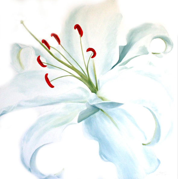 Lillies2_small