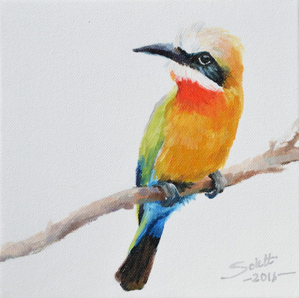 Bee Eater1