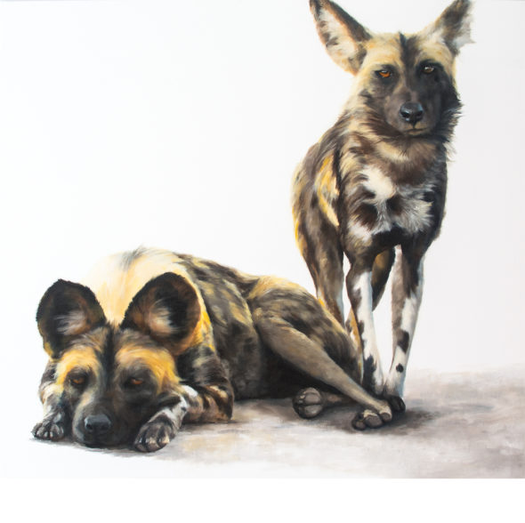 Wild Dogs 3_small